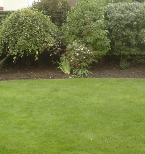 General Gardening Block
