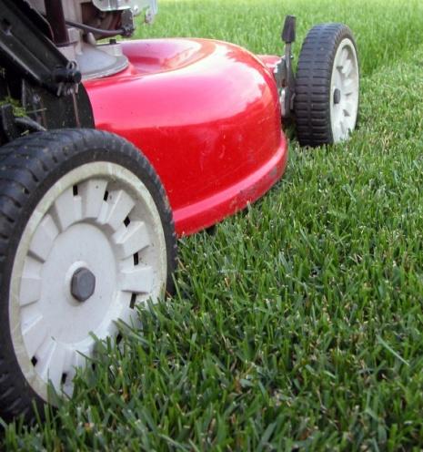 Lawn Mowing Block
