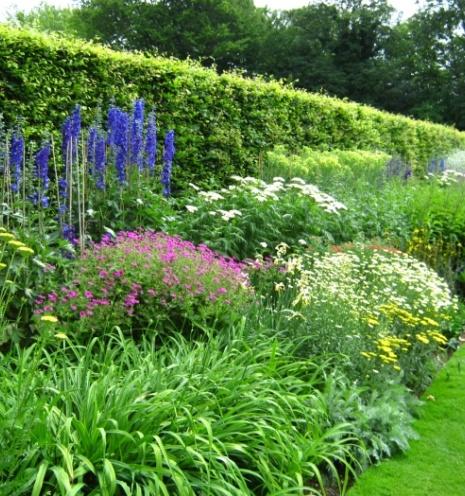 Winter Garden Improvements Block