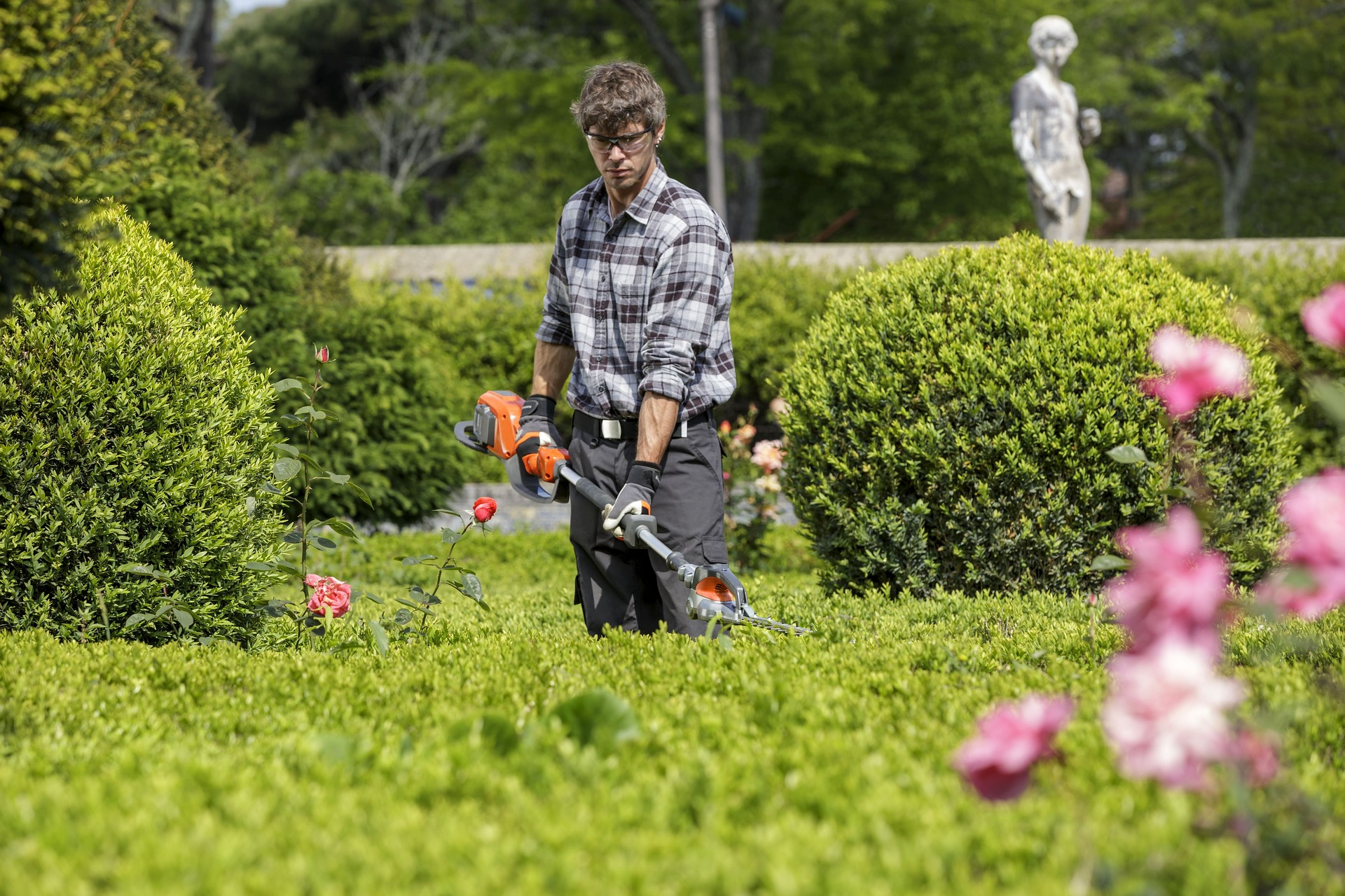 maintaining-beautiful-hedges-man-with-hedge-trimmer