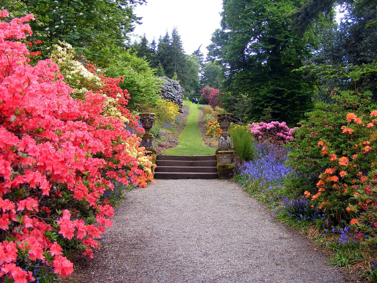 landscape-design-cottage-garden-diverse-colour