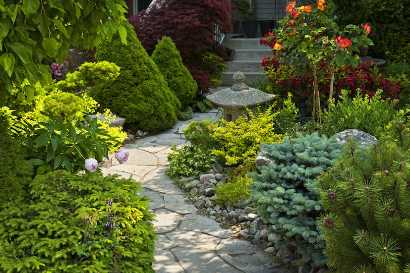 landscape-design-cottage-garden-pathway