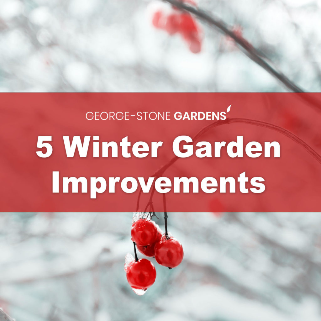 winter-garden-improvements