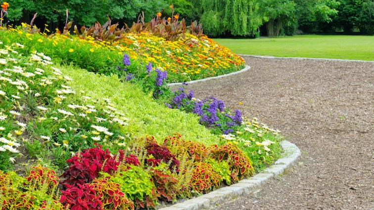 shrub-island-with-stunning-flowers